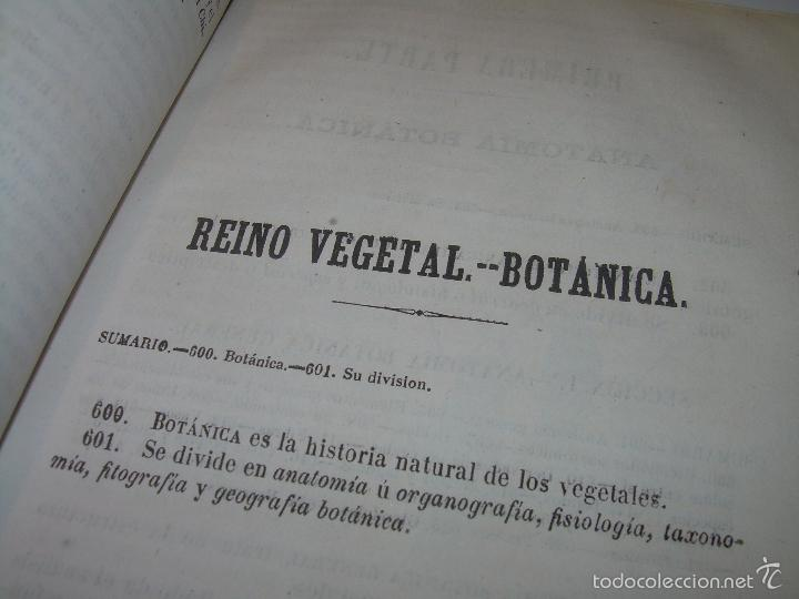 Libros antiguos: LIBRO TAPAS PIEL...HISTORIA NATURAL....ZOOLOGIA,BOTANICA,MINERALOGIA,ZOOGRAFIA.ETC..AÑO 1.870 - Foto 14 - 56514916