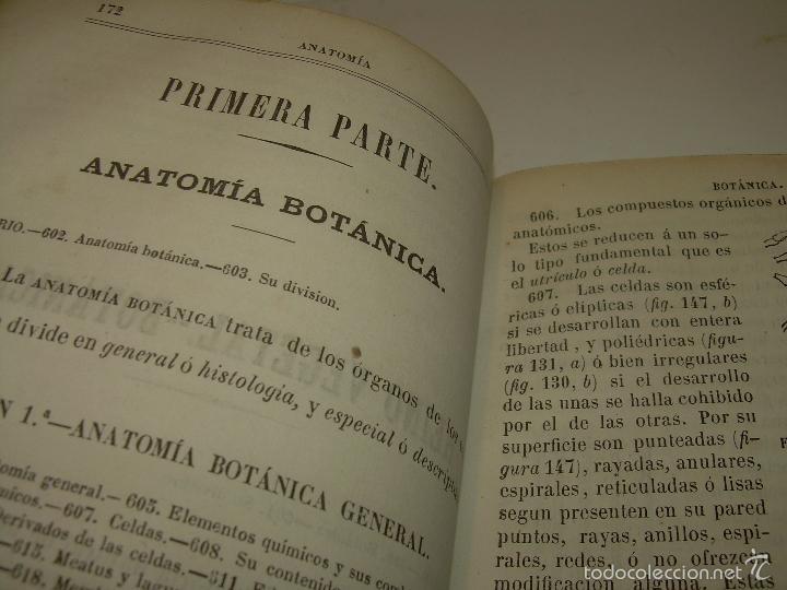 Libros antiguos: LIBRO TAPAS PIEL...HISTORIA NATURAL....ZOOLOGIA,BOTANICA,MINERALOGIA,ZOOGRAFIA.ETC..AÑO 1.870 - Foto 15 - 56514916