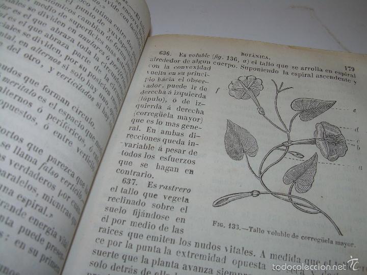 Libros antiguos: LIBRO TAPAS PIEL...HISTORIA NATURAL....ZOOLOGIA,BOTANICA,MINERALOGIA,ZOOGRAFIA.ETC..AÑO 1.870 - Foto 16 - 56514916