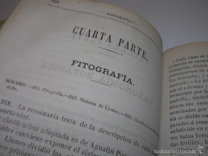 Libros antiguos: LIBRO TAPAS PIEL...HISTORIA NATURAL....ZOOLOGIA,BOTANICA,MINERALOGIA,ZOOGRAFIA.ETC..AÑO 1.870 - Foto 17 - 56514916