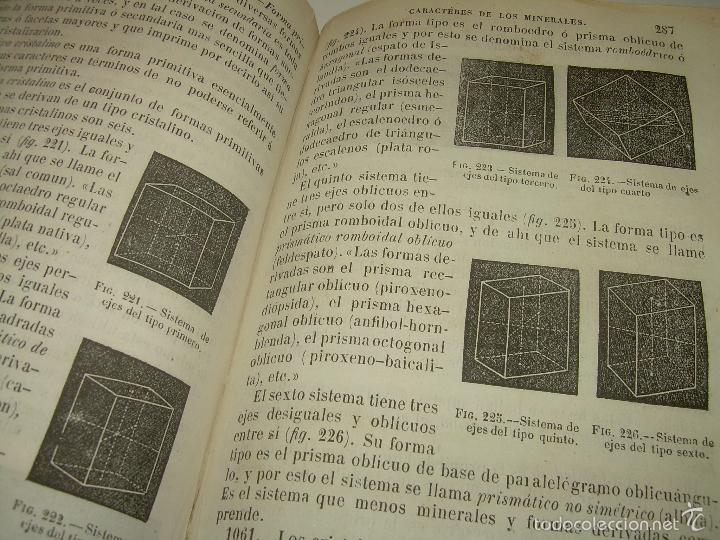 Libros antiguos: LIBRO TAPAS PIEL...HISTORIA NATURAL....ZOOLOGIA,BOTANICA,MINERALOGIA,ZOOGRAFIA.ETC..AÑO 1.870 - Foto 21 - 56514916