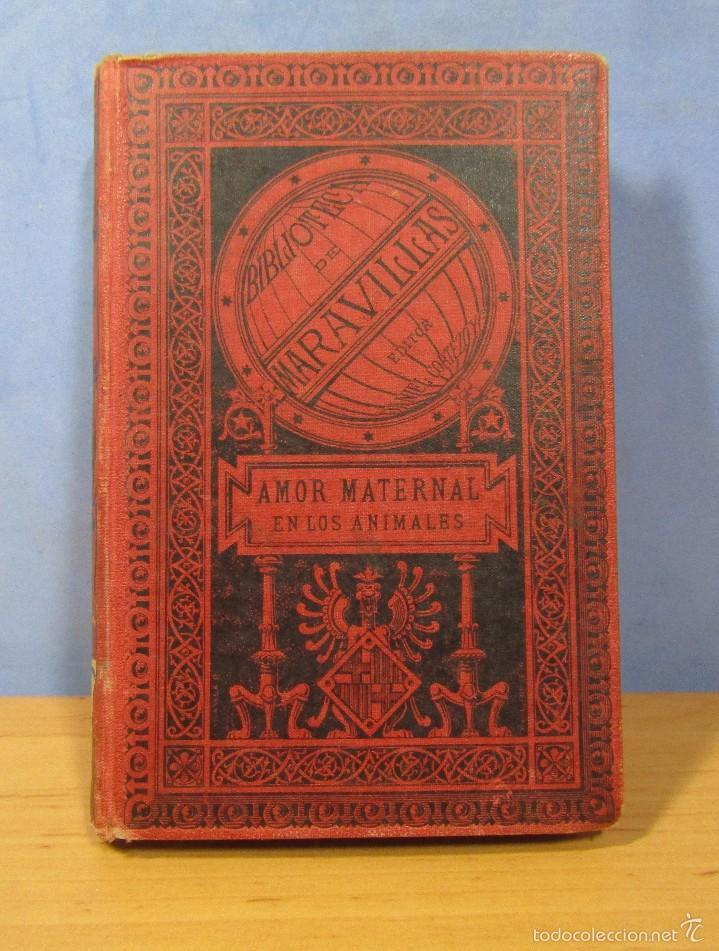 AMOR MATERNAL EN LOS ANIMALES BIBLIOTECA MARAVILLAS CECILIO NAVARRO ILUST. A.MENSEL AÑO 1885 (Libros Antiguos, Raros y Curiosos - Ciencias, Manuales y Oficios - Bilogía y Botánica)