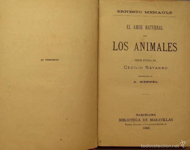 Libros antiguos: AMOR MATERNAL EN LOS ANIMALES BIBLIOTECA MARAVILLAS CECILIO NAVARRO ILUST. A.MENSEL AÑO 1885 - Foto 2 - 56573432