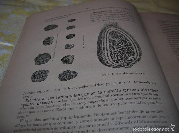 Libros antiguos: Muy interesante libro Agricultura,por Lopez Vidaur .Segunda edición ,año 1887 - Foto 6 - 57690274