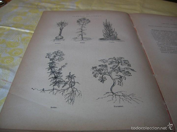 Libros antiguos: Muy interesante libro Agricultura,por Lopez Vidaur .Segunda edición ,año 1887 - Foto 10 - 57690274