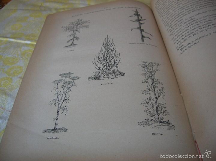 Libros antiguos: Muy interesante libro Agricultura,por Lopez Vidaur .Segunda edición ,año 1887 - Foto 11 - 57690274