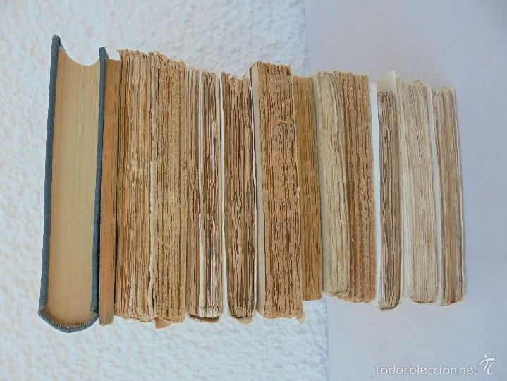 Libros antiguos: COLECCION DE LIBROS SOBRE INSECTOS. TODOS FOTOGRAFIADOS. 3 LIBROS SOBRE ABEJAS. 13 LIBROS EN TOTAL. - Foto 5 - 57691855