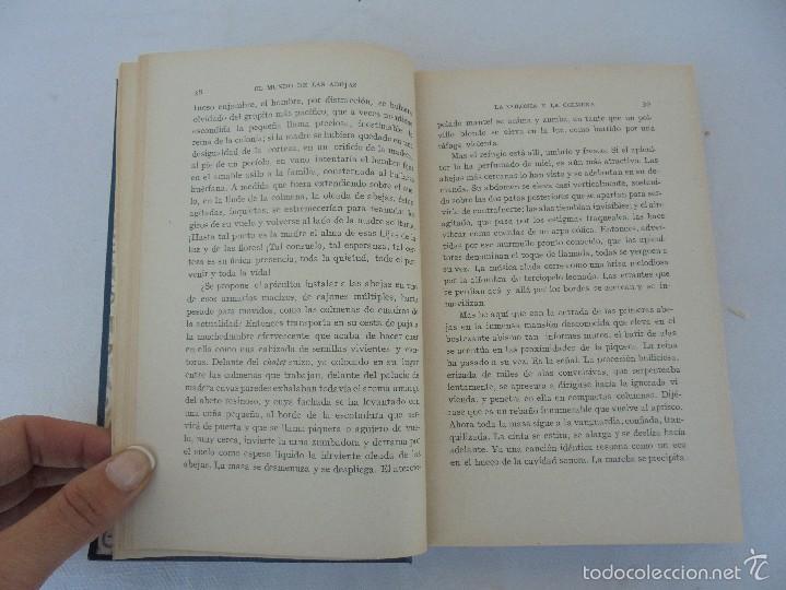 Libros antiguos: COLECCION DE LIBROS SOBRE INSECTOS. TODOS FOTOGRAFIADOS. 3 LIBROS SOBRE ABEJAS. 13 LIBROS EN TOTAL. - Foto 13 - 57691855