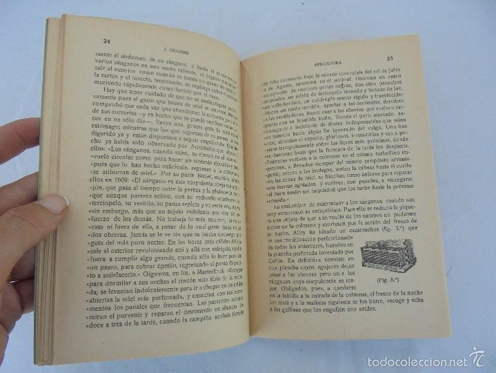Libros antiguos: COLECCION DE LIBROS SOBRE INSECTOS. TODOS FOTOGRAFIADOS. 3 LIBROS SOBRE ABEJAS. 13 LIBROS EN TOTAL. - Foto 20 - 57691855