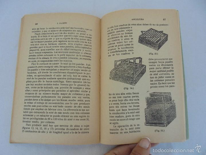 Libros antiguos: COLECCION DE LIBROS SOBRE INSECTOS. TODOS FOTOGRAFIADOS. 3 LIBROS SOBRE ABEJAS. 13 LIBROS EN TOTAL. - Foto 21 - 57691855