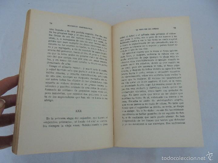Libros antiguos: COLECCION DE LIBROS SOBRE INSECTOS. TODOS FOTOGRAFIADOS. 3 LIBROS SOBRE ABEJAS. 13 LIBROS EN TOTAL. - Foto 26 - 57691855