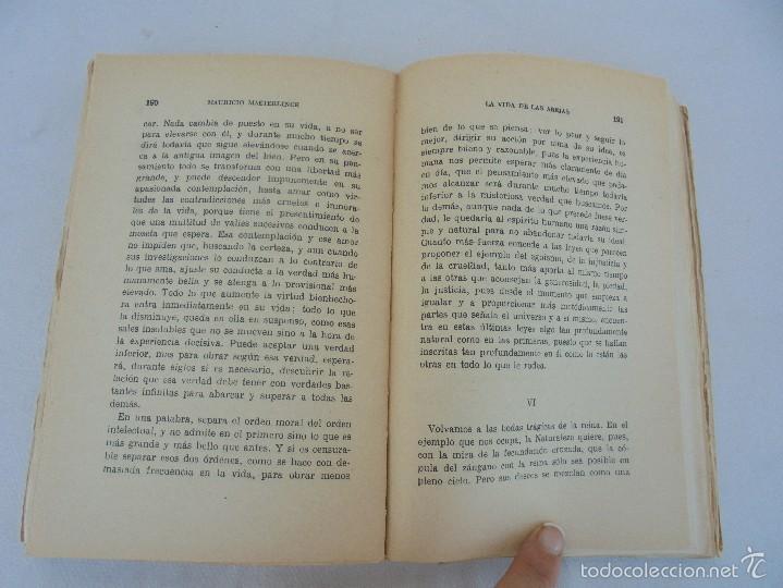 Libros antiguos: COLECCION DE LIBROS SOBRE INSECTOS. TODOS FOTOGRAFIADOS. 3 LIBROS SOBRE ABEJAS. 13 LIBROS EN TOTAL. - Foto 27 - 57691855