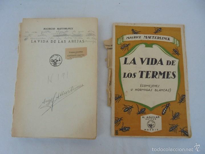 Libros antiguos: COLECCION DE LIBROS SOBRE INSECTOS. TODOS FOTOGRAFIADOS. 3 LIBROS SOBRE ABEJAS. 13 LIBROS EN TOTAL. - Foto 29 - 57691855