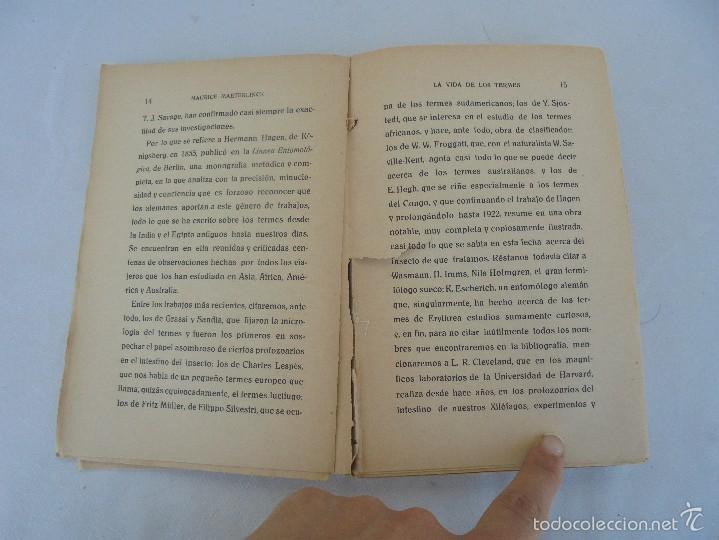 Libros antiguos: COLECCION DE LIBROS SOBRE INSECTOS. TODOS FOTOGRAFIADOS. 3 LIBROS SOBRE ABEJAS. 13 LIBROS EN TOTAL. - Foto 34 - 57691855