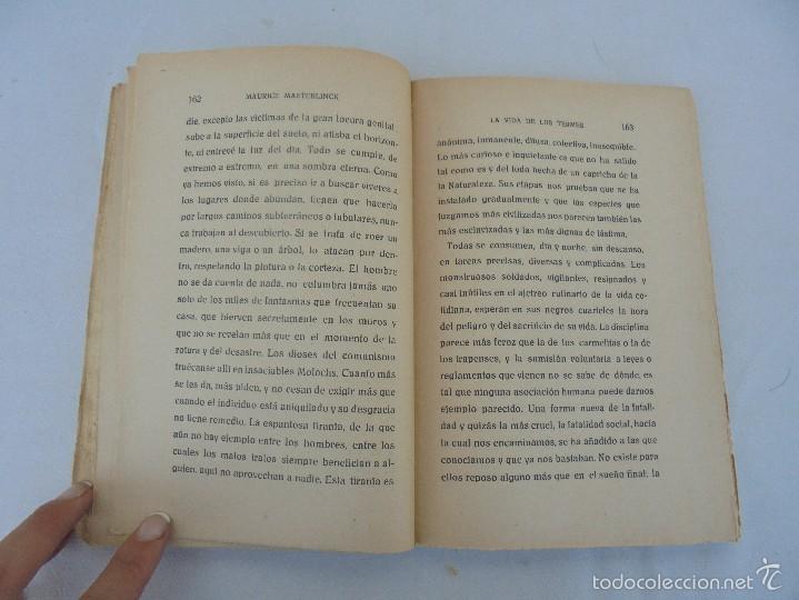 Libros antiguos: COLECCION DE LIBROS SOBRE INSECTOS. TODOS FOTOGRAFIADOS. 3 LIBROS SOBRE ABEJAS. 13 LIBROS EN TOTAL. - Foto 35 - 57691855