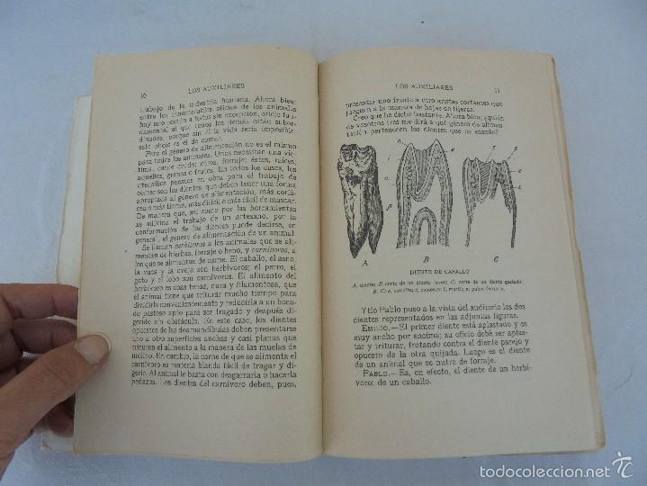 Libros antiguos: COLECCION DE LIBROS SOBRE INSECTOS. TODOS FOTOGRAFIADOS. 3 LIBROS SOBRE ABEJAS. 13 LIBROS EN TOTAL. - Foto 41 - 57691855