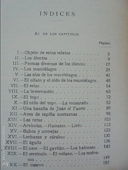 Libros antiguos: COLECCION DE LIBROS SOBRE INSECTOS. TODOS FOTOGRAFIADOS. 3 LIBROS SOBRE ABEJAS. 13 LIBROS EN TOTAL. - Foto 45 - 57691855