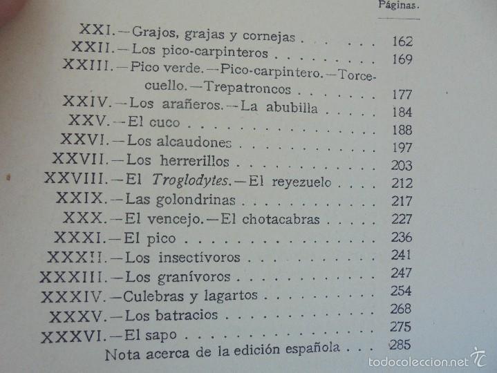 Libros antiguos: COLECCION DE LIBROS SOBRE INSECTOS. TODOS FOTOGRAFIADOS. 3 LIBROS SOBRE ABEJAS. 13 LIBROS EN TOTAL. - Foto 46 - 57691855