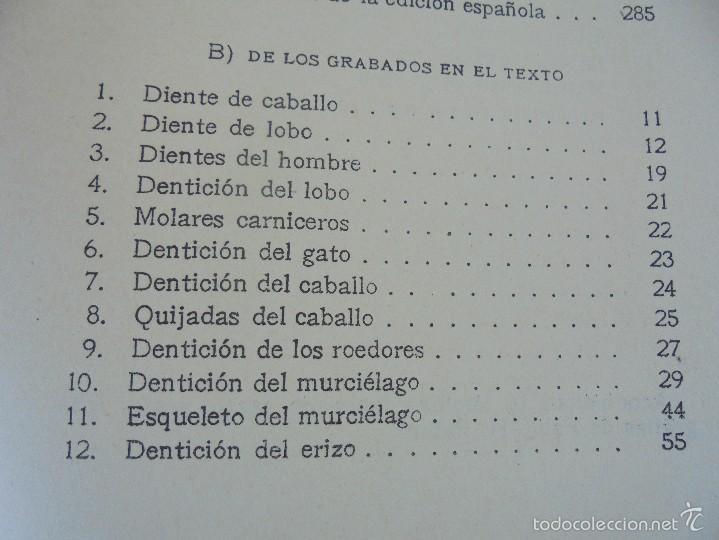 Libros antiguos: COLECCION DE LIBROS SOBRE INSECTOS. TODOS FOTOGRAFIADOS. 3 LIBROS SOBRE ABEJAS. 13 LIBROS EN TOTAL. - Foto 47 - 57691855