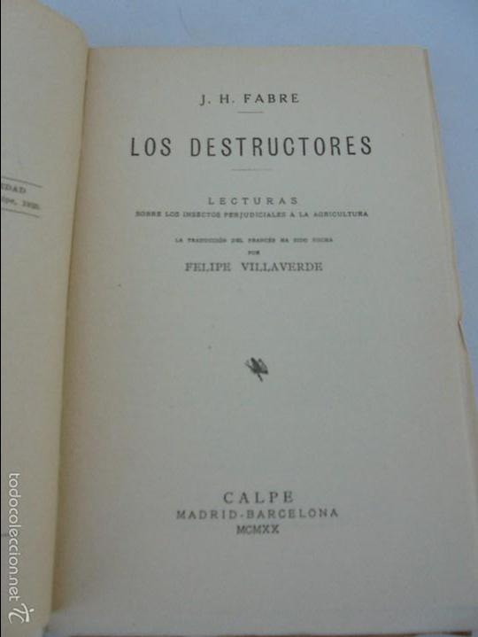 Libros antiguos: COLECCION DE LIBROS SOBRE INSECTOS. TODOS FOTOGRAFIADOS. 3 LIBROS SOBRE ABEJAS. 13 LIBROS EN TOTAL. - Foto 52 - 57691855