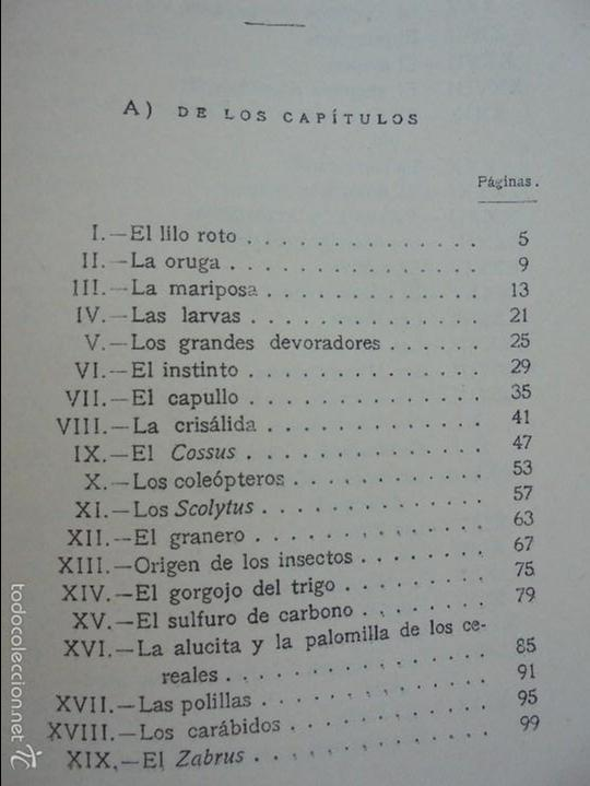 Libros antiguos: COLECCION DE LIBROS SOBRE INSECTOS. TODOS FOTOGRAFIADOS. 3 LIBROS SOBRE ABEJAS. 13 LIBROS EN TOTAL. - Foto 57 - 57691855