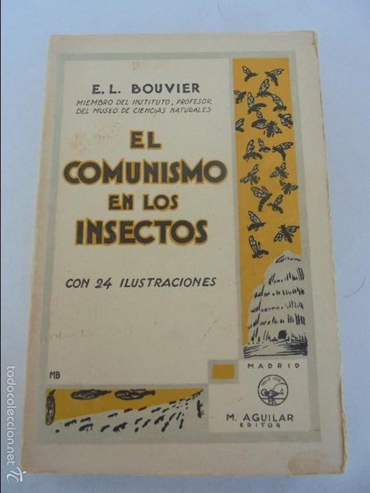 Libros antiguos: COLECCION DE LIBROS SOBRE INSECTOS. TODOS FOTOGRAFIADOS. 3 LIBROS SOBRE ABEJAS. 13 LIBROS EN TOTAL. - Foto 61 - 57691855