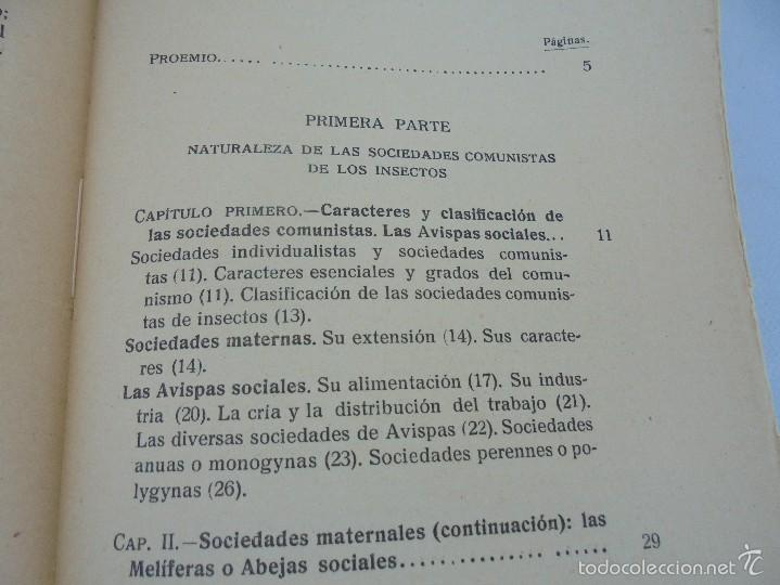 Libros antiguos: COLECCION DE LIBROS SOBRE INSECTOS. TODOS FOTOGRAFIADOS. 3 LIBROS SOBRE ABEJAS. 13 LIBROS EN TOTAL. - Foto 65 - 57691855