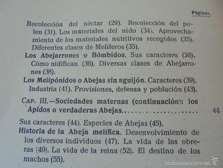 Libros antiguos: COLECCION DE LIBROS SOBRE INSECTOS. TODOS FOTOGRAFIADOS. 3 LIBROS SOBRE ABEJAS. 13 LIBROS EN TOTAL. - Foto 66 - 57691855