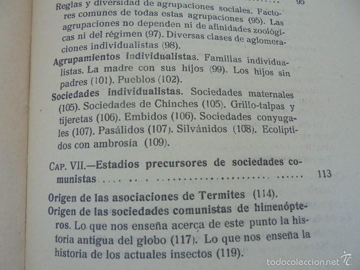 Libros antiguos: COLECCION DE LIBROS SOBRE INSECTOS. TODOS FOTOGRAFIADOS. 3 LIBROS SOBRE ABEJAS. 13 LIBROS EN TOTAL. - Foto 69 - 57691855