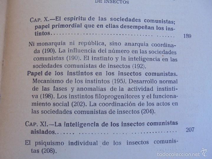 Libros antiguos: COLECCION DE LIBROS SOBRE INSECTOS. TODOS FOTOGRAFIADOS. 3 LIBROS SOBRE ABEJAS. 13 LIBROS EN TOTAL. - Foto 73 - 57691855
