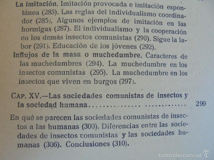 Libros antiguos: COLECCION DE LIBROS SOBRE INSECTOS. TODOS FOTOGRAFIADOS. 3 LIBROS SOBRE ABEJAS. 13 LIBROS EN TOTAL. - Foto 79 - 57691855
