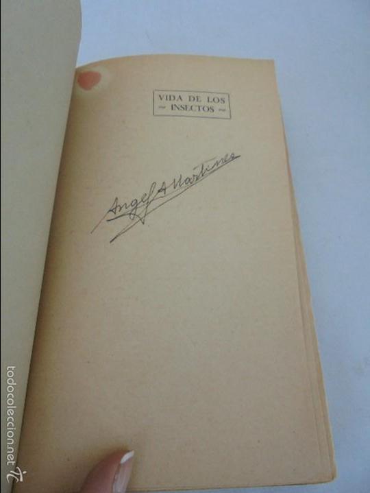 Libros antiguos: COLECCION DE LIBROS SOBRE INSECTOS. TODOS FOTOGRAFIADOS. 3 LIBROS SOBRE ABEJAS. 13 LIBROS EN TOTAL. - Foto 82 - 57691855