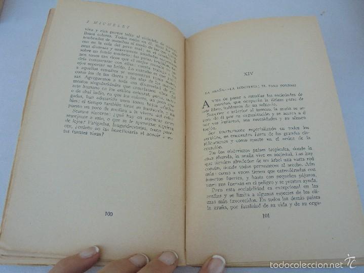 Libros antiguos: COLECCION DE LIBROS SOBRE INSECTOS. TODOS FOTOGRAFIADOS. 3 LIBROS SOBRE ABEJAS. 13 LIBROS EN TOTAL. - Foto 85 - 57691855