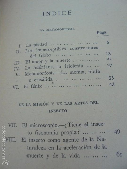 Libros antiguos: COLECCION DE LIBROS SOBRE INSECTOS. TODOS FOTOGRAFIADOS. 3 LIBROS SOBRE ABEJAS. 13 LIBROS EN TOTAL. - Foto 86 - 57691855