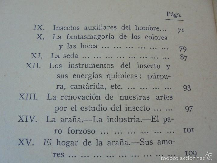 Libros antiguos: COLECCION DE LIBROS SOBRE INSECTOS. TODOS FOTOGRAFIADOS. 3 LIBROS SOBRE ABEJAS. 13 LIBROS EN TOTAL. - Foto 87 - 57691855