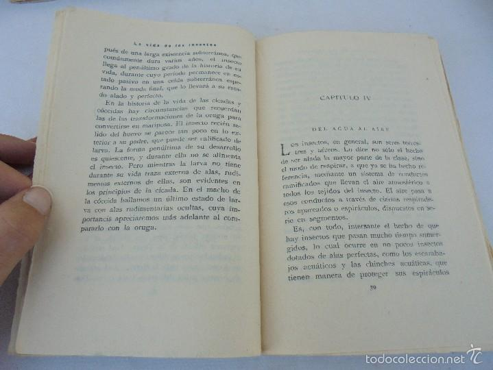 Libros antiguos: COLECCION DE LIBROS SOBRE INSECTOS. TODOS FOTOGRAFIADOS. 3 LIBROS SOBRE ABEJAS. 13 LIBROS EN TOTAL. - Foto 93 - 57691855