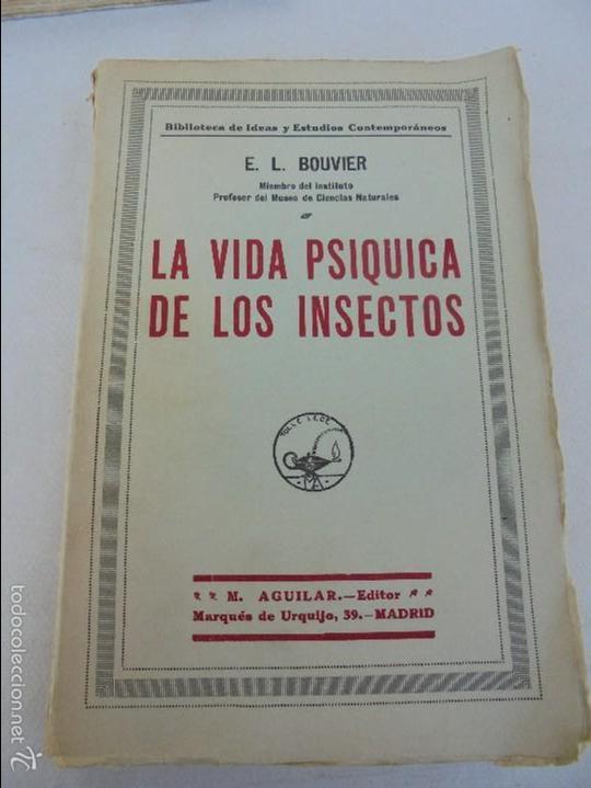 Libros antiguos: COLECCION DE LIBROS SOBRE INSECTOS. TODOS FOTOGRAFIADOS. 3 LIBROS SOBRE ABEJAS. 13 LIBROS EN TOTAL. - Foto 96 - 57691855