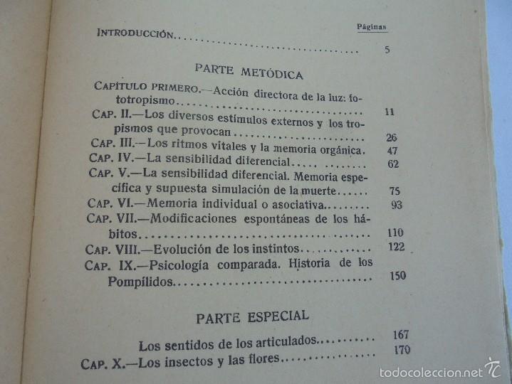 Libros antiguos: COLECCION DE LIBROS SOBRE INSECTOS. TODOS FOTOGRAFIADOS. 3 LIBROS SOBRE ABEJAS. 13 LIBROS EN TOTAL. - Foto 100 - 57691855