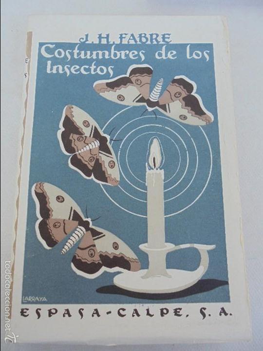 Libros antiguos: COLECCION DE LIBROS SOBRE INSECTOS. TODOS FOTOGRAFIADOS. 3 LIBROS SOBRE ABEJAS. 13 LIBROS EN TOTAL. - Foto 103 - 57691855