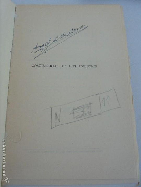 Libros antiguos: COLECCION DE LIBROS SOBRE INSECTOS. TODOS FOTOGRAFIADOS. 3 LIBROS SOBRE ABEJAS. 13 LIBROS EN TOTAL. - Foto 104 - 57691855