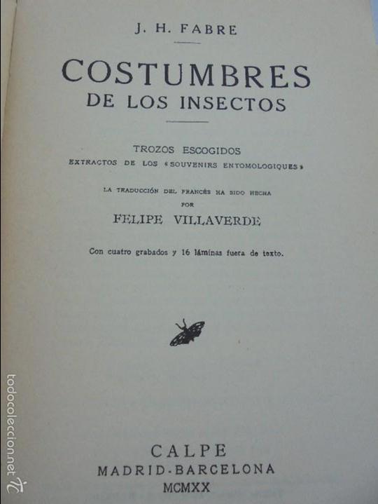 Libros antiguos: COLECCION DE LIBROS SOBRE INSECTOS. TODOS FOTOGRAFIADOS. 3 LIBROS SOBRE ABEJAS. 13 LIBROS EN TOTAL. - Foto 105 - 57691855