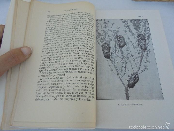 Libros antiguos: COLECCION DE LIBROS SOBRE INSECTOS. TODOS FOTOGRAFIADOS. 3 LIBROS SOBRE ABEJAS. 13 LIBROS EN TOTAL. - Foto 106 - 57691855