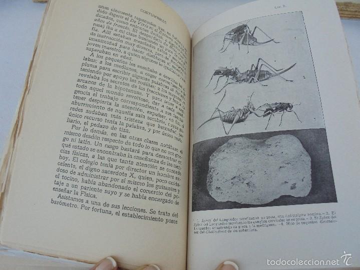Libros antiguos: COLECCION DE LIBROS SOBRE INSECTOS. TODOS FOTOGRAFIADOS. 3 LIBROS SOBRE ABEJAS. 13 LIBROS EN TOTAL. - Foto 107 - 57691855