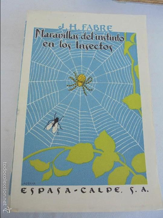 Libros antiguos: COLECCION DE LIBROS SOBRE INSECTOS. TODOS FOTOGRAFIADOS. 3 LIBROS SOBRE ABEJAS. 13 LIBROS EN TOTAL. - Foto 112 - 57691855