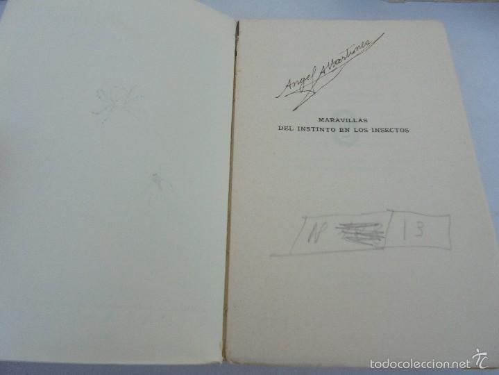 Libros antiguos: COLECCION DE LIBROS SOBRE INSECTOS. TODOS FOTOGRAFIADOS. 3 LIBROS SOBRE ABEJAS. 13 LIBROS EN TOTAL. - Foto 113 - 57691855