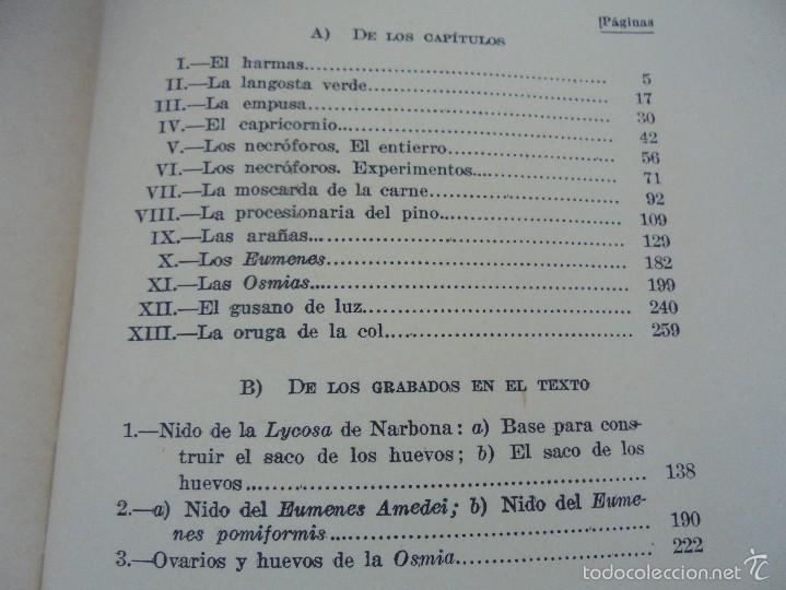 Libros antiguos: COLECCION DE LIBROS SOBRE INSECTOS. TODOS FOTOGRAFIADOS. 3 LIBROS SOBRE ABEJAS. 13 LIBROS EN TOTAL. - Foto 118 - 57691855