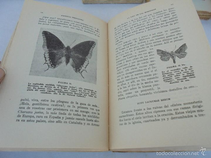 Libros antiguos: COLECCION DE LIBROS SOBRE INSECTOS. TODOS FOTOGRAFIADOS. 3 LIBROS SOBRE ABEJAS. 13 LIBROS EN TOTAL. - Foto 123 - 57691855