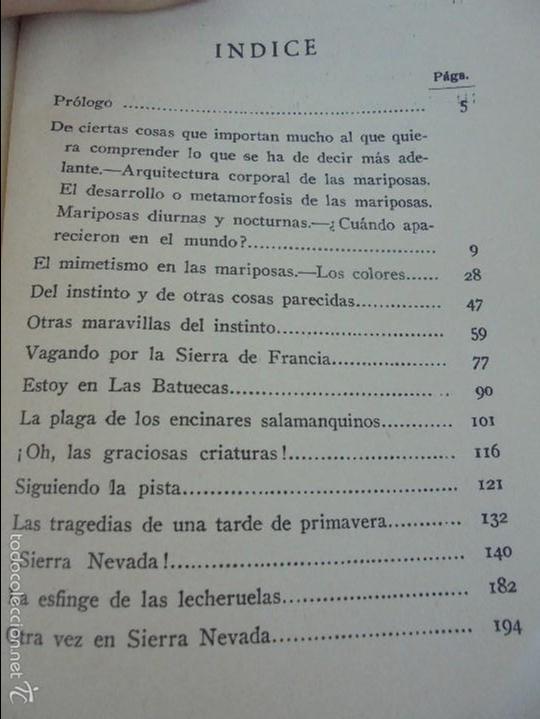 Libros antiguos: COLECCION DE LIBROS SOBRE INSECTOS. TODOS FOTOGRAFIADOS. 3 LIBROS SOBRE ABEJAS. 13 LIBROS EN TOTAL. - Foto 125 - 57691855