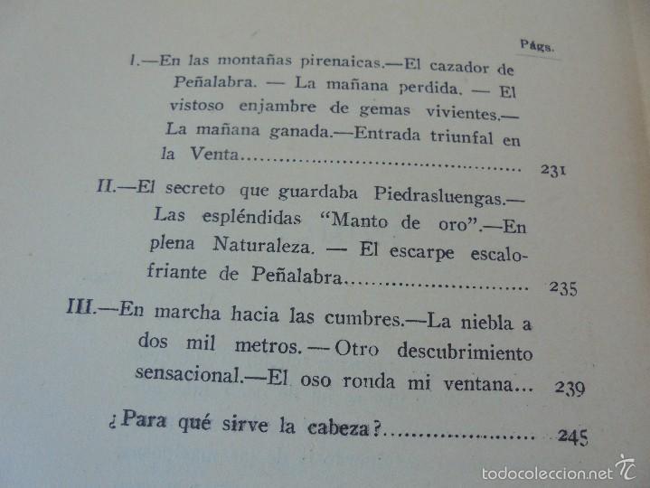 Libros antiguos: COLECCION DE LIBROS SOBRE INSECTOS. TODOS FOTOGRAFIADOS. 3 LIBROS SOBRE ABEJAS. 13 LIBROS EN TOTAL. - Foto 126 - 57691855