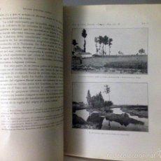 Libros antiguos: LA LLANURA MANCHEGA Y SUS MAMÍFEROS FÓSILES: YACIMIENTO DE LA PUEBLA DE ALMORADIER. (M., 1921) MAPA. Lote 139777508